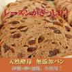 天然酵母 全粒粉 100% パン レーズンクルミ 特大