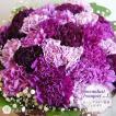 花 花束 古希祝い フラワーブーケ 紫の花 紫のカーネーション ムーンダストの花束(L) 36本の花束 生花 珍しい花 青い花 古希祝い サントリーフラワーズ