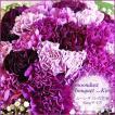 ムーンダストの花束(LL) 48本 母の日 花 ギフト 母の日ギフト 母の日 花 プレゼント 青い花 紫のカーネーション 母の日人気ギフト 希少品種
