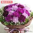 ムーンダストの花束(M) 24本 母の日 花 ギフト 母の日ギフト 母の日 花 プレゼント ギフト 花 サントリー 青いカーネーション 紫のカーネーション