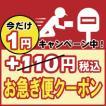 【お急ぎ便クーポン】(ポスト投函可能な商品のみ)