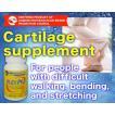 FLEX PG cartilage supplement