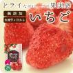 フリーズドライ 食品 フルーツ 無添加  無加糖 いちご 10g フリーズドライ 離乳食 お菓子 赤ちゃん ミライフルーツ mirai fruits  防災