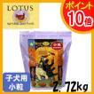 ロータス パピー チキンレシピ 小粒 2.72kg 正規品