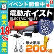 電動ウインチ 家庭用 100V 電動ホイスト 最大200kg (最大2000円クーポン配布中)