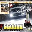 26-B-1)PSX24W 樹脂レンズフォグ 純正LEDフォグ装着車対応 Eマーク取得ガラスレンズフォグランプユニット付 凌駕-RYOGA-L5500 LEDフォグキット 5500lm 6500K H11