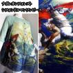 ワンピースナポレオンシフォンワンピドルマン風ゆったりデザイン英雄絵画的アート系文科系世界史歴女