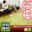 【送料無料】plywoodオリジナル Zenken ホットカーペット &選べる ラグセット 《1畳タイプ》