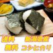 お米 新潟県産コシヒカリ 白米2kg 【沖縄・離島対応】