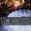 イルミネーションライト LED チューブ ロープ ライト クリスマスツリー ハロウィン お祭り 電飾 100M 3000灯 白 ホワイト 延長用 IRMRW100