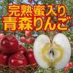(予約:11月下旬〜12月下旬発送予定)完熟蜜入りりんご 青森県大釈迦産 約5kg(14〜16個)