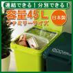 ごみ箱 コンテナスタイル45J ゴミ箱 キッチン 分別 ダストBOX ごみ箱  ふた付き スリム CS2-45J