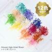 かすみ草 ドライフラワー 小分け ハーバリウム 花材 白 黄 緑 紫 赤 青等 12色/セット