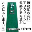 パターマット工房 30cm×3m EXPERTパターマット 距離感マスターカップ付き 日本製 パット 練習