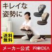 背筋がGUUUN 美姿勢座椅子 クラシック 座椅子 姿勢 椅子 腰痛 テレワーク 骨盤 リクライニング グーン プロイデア