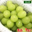 【送料無料】岡山県産 シャインマスカット 1房入り化粧箱(800g〜1kg)