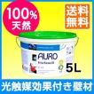 壁が空気をキレイにする!?漆喰風の白壁塗料 AURO(アウロ) No.328 光触媒効果付 天然ウォールペイント 5L