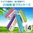 歯ブラシケース UV殺菌 除菌 紫外線 消毒 歯ブラシ 入れゆうパケット限定送料無料 ◇RIM-AT-08