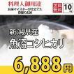 お米 10kg コシヒカリ 米作り名人が作った (5kg×2) 新潟県魚沼産 検査一等 29年産