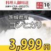 お米 10kg コシヒカリ(5kg×2) 茨城県産 検査一等米 28年産
