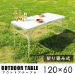 2WAYアルミテーブル 120×60 アウトドアテーブル テーブル レジャーテーブル ピクニックテーブル アウトドアテーブル