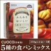 クオカ(cuoca) プレミアム 5種の食パンミックス 250g 5種 ベーカリー用