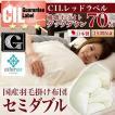 日本製 羽毛布団 セミダブル 掛けふとん CILレッドラベル ユーラシアダックダウン 羽毛のためのアレルGプラス 5年保証