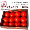 トマト 送料無料 九州 熊本産  ソムリエトマト 1.3kgもぎたてを順次発送 6月20日まで