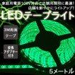 イルミネーション LED テープ テープライト チューブ 店舗用 5m 60シリーズ グリーン 100V対応アダプター付き
