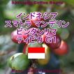 コーヒー豆 インドネシア スマトラ マンデリン ビンタンリマ 珈琲豆 G1 100g 送料無料&割引クーポン