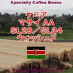コーヒー豆 クーポン ケニア 100g マサイ AA フルシティロースト 珈琲豆