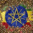 クーポン10%割&送料無料 コーヒー豆 おすすめ 通販 エチオピア モカ イルガチェフ G1 ウォッシュド 中煎り(ハイロースト) 500g