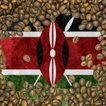 クーポン10%割&送料無料 コーヒー豆 おすすめ 通販 ケニア レッドマウンテン 中深煎り(フルシティ) 500g