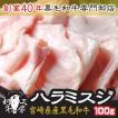 肉 もつ鍋 A5 宮崎県産 黒毛和牛 ハラミスジ 切れ目入り 100g 牛すじ ホルモン 焼肉