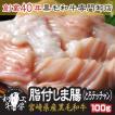肉 もつ鍋 A5 宮崎県産 黒毛和牛  脂付 しま腸 100g 大とろ テッチャン もつ煮  どて煮 焼肉 ホルモン