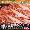 肉 2021 ギフト 宮崎県産 和牛 上ロース 200g お試し ギフト