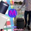 スーツケース Mサイズ 中型 TSAロック フレーム ダブルキャスター