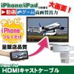 HDMIキャストケーブル iPhone iPadの映像をテレビに映すケーブル