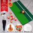 ゴルフ 練習 マット ティー ボール12個付き スイング 素振り 人工芝 自宅 室内 30×60