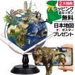 地球儀 しゃべる  地球儀  直径30cm  光る ライト AR 日本語 英語 地勢図/行政 2タイプ インテリア 子供 ランプ 全方位回転 山岳隆起
