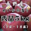 あいかの香り送料無料 秀品お歳暮に信州産 あいかの香り5kg14玉〜18玉 長野 りんご