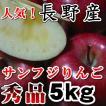 贈答品にも人気長野 サンふじりんご 送料無料  秀品 信州産 5kg11玉〜18玉長野サンふじりんご お歳暮 人気