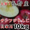長野 サンふじりんご 自家用10kg 訳あり 送料無料 ご家庭用7年連続1位のこだわりりんご