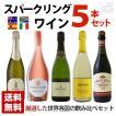 スパークリングワイン 世界各国飲み比べセット 5本セット 微発泡