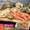 バーベキューセット B 海鮮 BBQセット 5種14品 3〜4人前【冷凍便】
