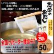 (販売元) 志学のおだし 50包入り 国産原料だしパック 原木椎茸の旨み ゆうパケット-F6
