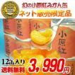小原紅みかん/さぬき紅みかんの缶詰12缶セット