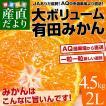 送料無料 和歌山県から産地直送 JAありだ 有田みかん ...
