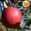 りんご サンふじ 3kg(6〜10玉) 長野県産 秀品 産地直送:c29