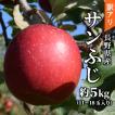 訳あり りんご サンふじ 5kg(11〜18玉) 長野県産 お取り寄せ 産地直送:c32